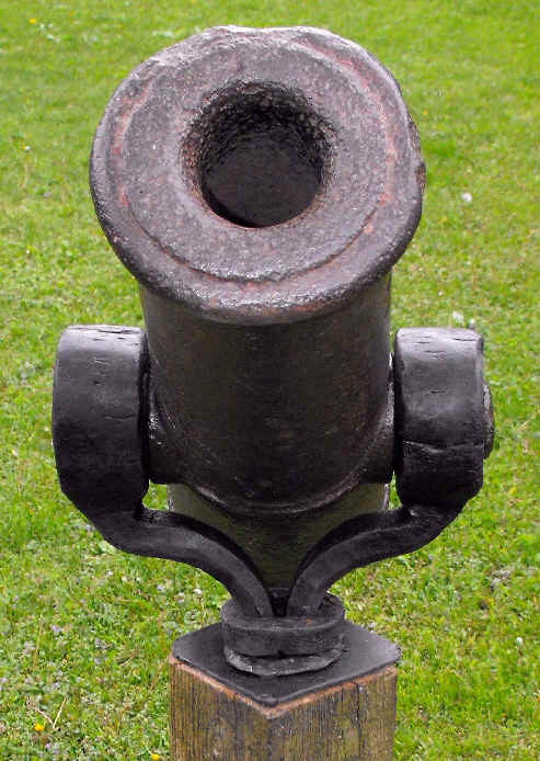 SWIVEL CANNON YOKE